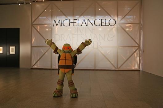 met-tmnt-Michelangelo-5